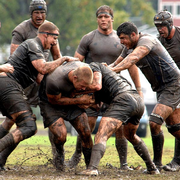 sport-teams